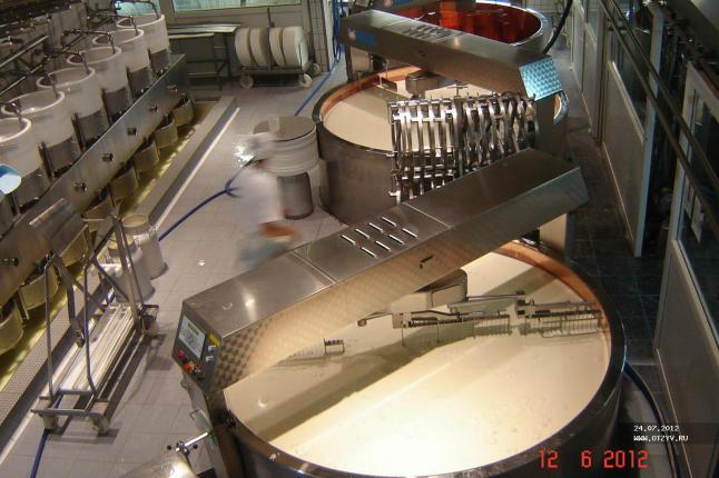 Фото - производство сыров в своем регионе