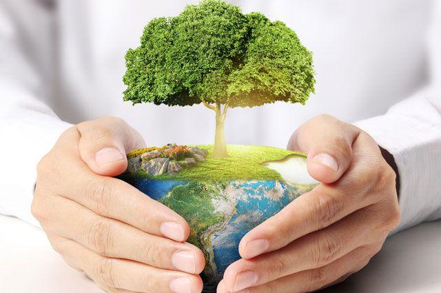 Фото - Экологическое сопровождение - развитие действующего бизнеса