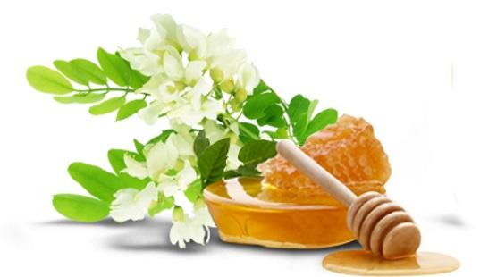 Фото - Производство меда и другой пчелопродукции