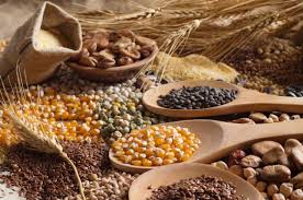 Photo 1 - Eport Grains and Pulses