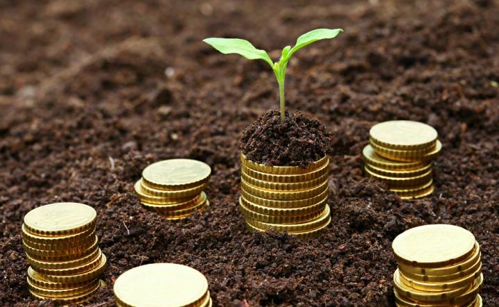 Ранние стадии развития стартапа - внимание инвесторов
